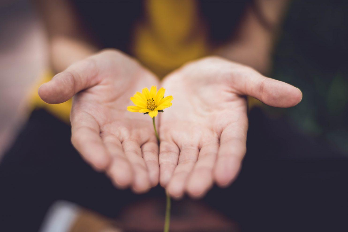 Elu nagu lill EFT-ga